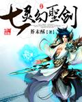 七灵幻圣剑