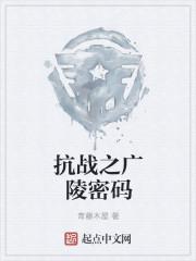 抗战之广陵密码