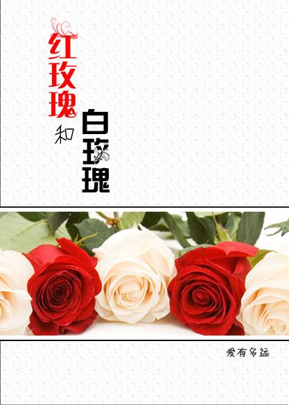 红玫瑰和白玫瑰GL