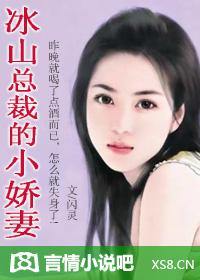 冰山总裁的小娇妻(全本)