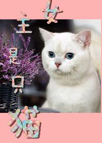 女主是只猫