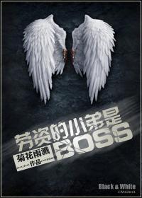 (系统)劳资的小弟是BOSS