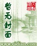 大清1851