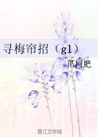 寻梅帘招(gl)