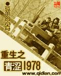 重生之青涩1978
